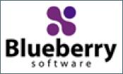 Logo Blueberry screencasting tool