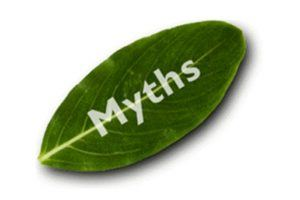 Myths and Realities Surrounding Online Learning