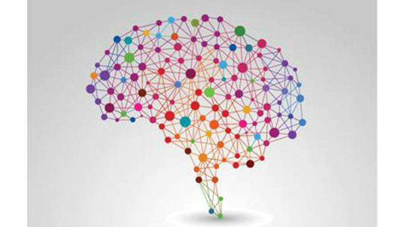 6 Scientifically Proven Brain Facts That eLearning Professionals Should Know