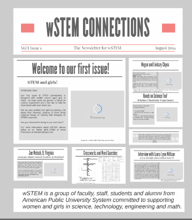 wSTEM_connections