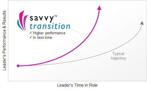Savvy Transition: performance comparison
