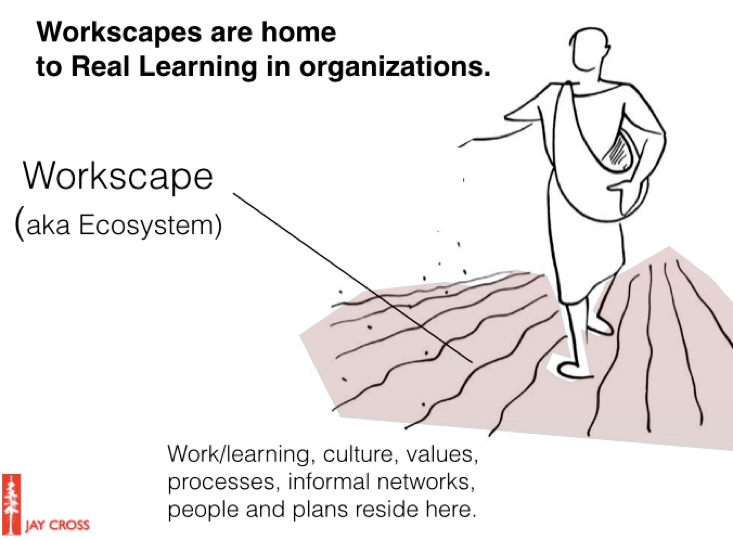 Real Learning: Workscapes are home to Real Learning in organizations.