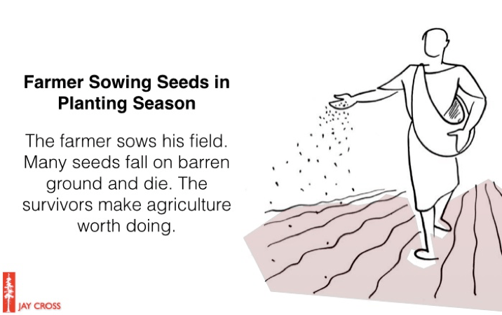 Real Learning: Farmer Sowing Seeds in Planting Season