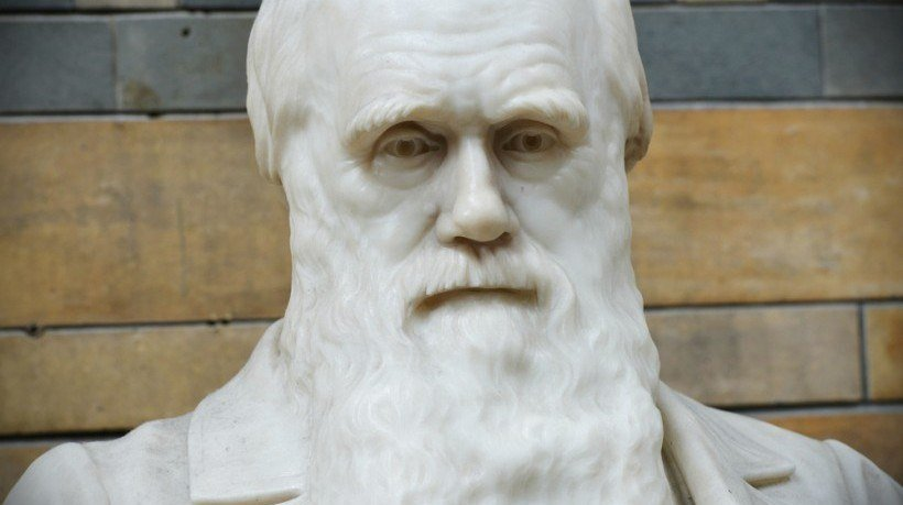 Knowledge Mining: What Can Darwin Tell Us About Instructional Design?