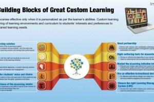 Image for 10 Building Blocks Of Great Custom Learning