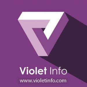 Violet InfoSystems Pvt. Ltd. logo