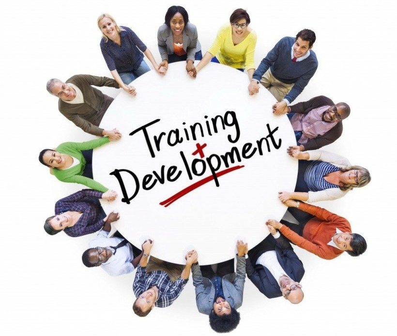 Image result for training and development