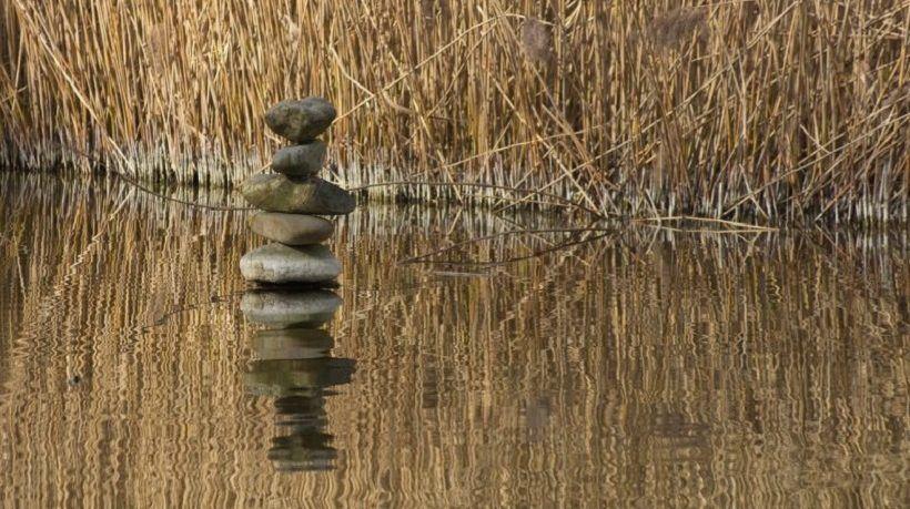 7 Tips To Balance Study, Work, And Personal Life