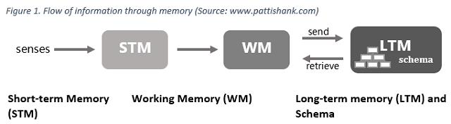 what is the process of memory from perception to retrieval what happens when the process is compromi Memory worksheet using the text, cognition: what is the process of memory from perception to retrieval what happens when the process is compromised after the brain receives and stores information.