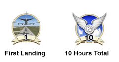 Flight Simulator badges of achievement