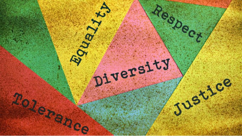 hrs role in diversity inclusion and equity